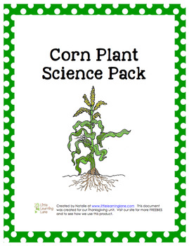 Corn Plant Science Pack