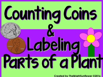 Counting Coins & Labeling Parts of a Plant