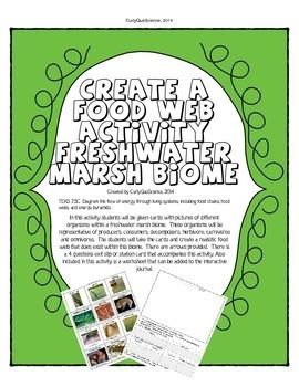 Food Web/Chain Activity Fresh Biome