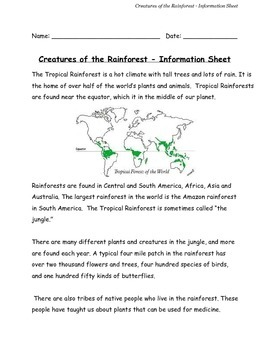 Creatures of the Rainforest Information Sheet PDF Grades 1-3