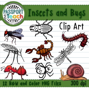 Creepy Crawly Bug and Critter Clip Art for Commercial Use