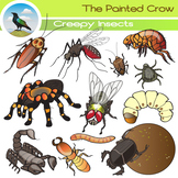 Creepy Insect Clip Art - Bug Illustrations - 24 piece colo