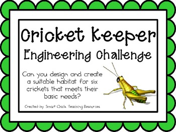 Cricket Keeper: Engineering Challenge Project ~ Great STEM