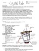 Crystal Lab and Complete Lesson Plan (Mineral Formation)