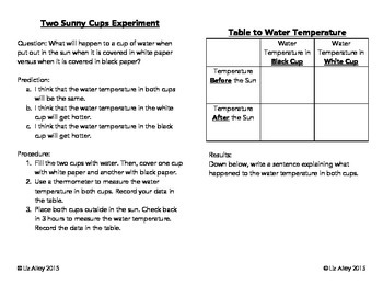 Cup Experiment Interactive Notebook.