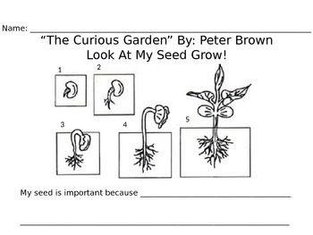 Curious Garden Response