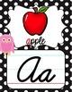 Cursive Alphabet Posters - Rainbow Owl with Black & White