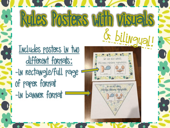 Cute Rules Posters with Visuals (in 2 different formats an