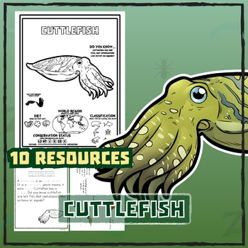 Cuttlefish -- 10 Resources -- Coloring Pages, Reading & Ac