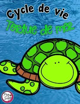 Cycle de vie - la tortue de mer