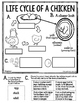 Cycles in Nature ~Second Grade Domain 6