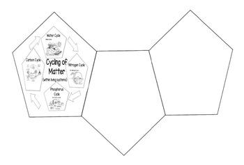 Cycling of Matter Foldable