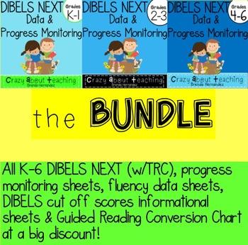 DIBELS & PROGRESS MONITORING BUNDLE