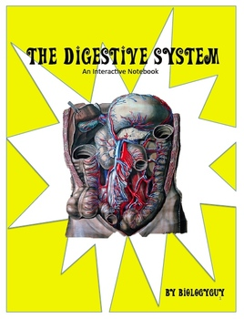 DIGESTIVE SYSTEM, Interactive Notebook