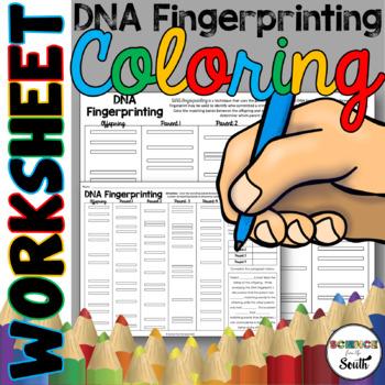 DNA Fingerprinting Coloring Worksheet for Interactive Note