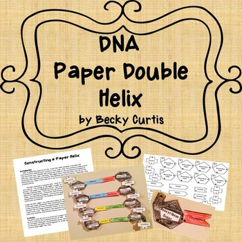 DNA Structure Lab: Paper Helix