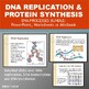 DNA Processes Bundle: DNA Replication and Protein Synthesi