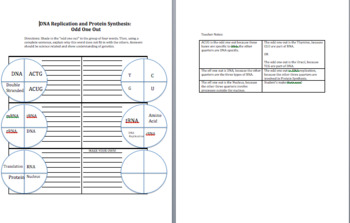 DNA Replication and Protein Synthesis Homework