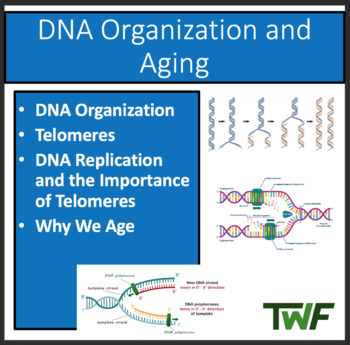 DNA Organization and Aging - A Senior Biology PowerPoint L