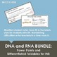 DNA and RNA Bundle: 2 Power points and 2 Graphic Organizer