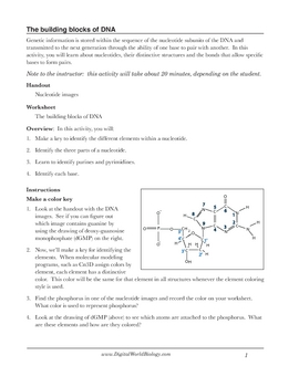 Printables Dna Worksheet dna structure worksheet identifying nucleotides by digital world nucleotides