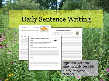 Daily Sentence Writing: Part 1