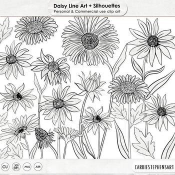 Daisies, PNG Digital Stamps, Daisy Flower Line Art & Flora