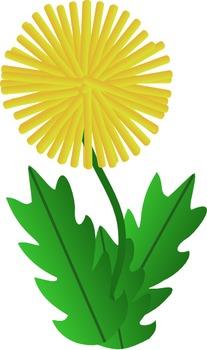 Dandelion Wine by Ray Bradbury Rhetorical Analysis Prompt
