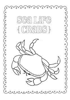 Day Packet - Crab { Sea Life } freebie