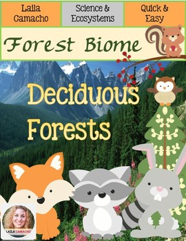 Forest Deciduous Forests