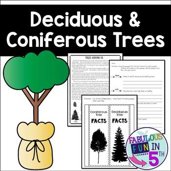 Deciduous and Coniferous Trees: Nonfiction Passage and Foldable