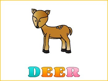 Deer Graphic Organizers