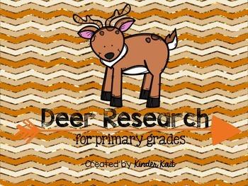 Deer Research