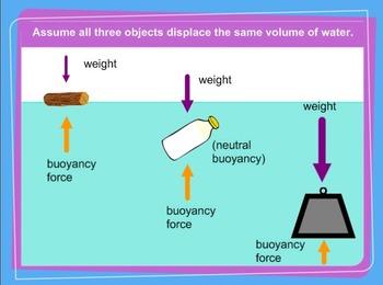 Density and Buoyancy