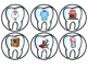 #presidentsdaydeals Dental Health- Mini Unit