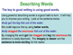 Describing Words - PowerPoint teaching resource