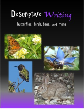 Descriptive Writing:  Butterflies, Birds, Bees and more