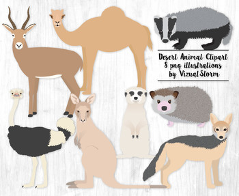Desert Animal Clip Art - 8 Hand Drawn Wild Animal Illustrations
