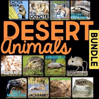 Desert Animals: Informational Article, QR Code Research Pa