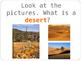 Desert habitat - animal adaptation