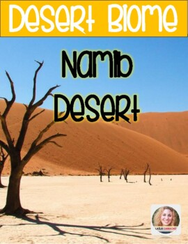 Desert The Namib Desert