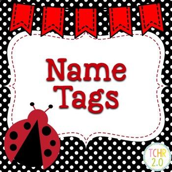 Desk Plates Name Tags Back to School Ladybugs
