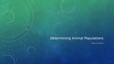 Determining Animal Populations