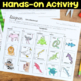 Diagram Organisms and Classify by Common Traits