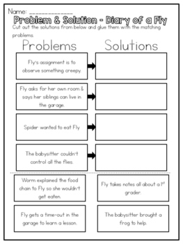 Diary of a Fly - Problem and Solution Worksheet