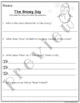 Differentiated Comprehension Questions The Snowy Day FREEBIE