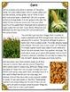 Differentiated Nonfiction Unit: Corn