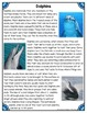 Differentiated Nonfiction Unit: Dolphins