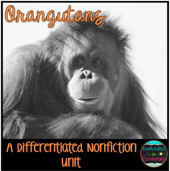 Differentiated Nonfiction Unit: Orangutans