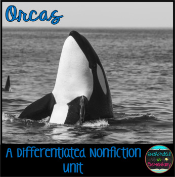 Differentiated Nonfiction Unit: Orcas